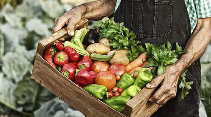 """Photo of За програмата """"Млад земјоделец"""" пријавени 1.045 земјоделски производители"""