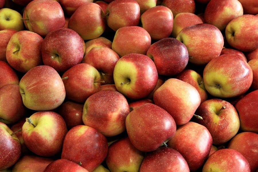 Photo of Русија не може да произведе нормални јаболки, Путин се чуди зошто тежат по половина килограм