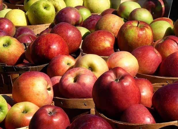 Photo of Преспанските овоштари задоволни од цената на јаболката