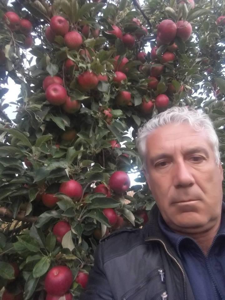 Photo of Менде Ивановски од с. Волкодери, ужива во бербата на јаболка