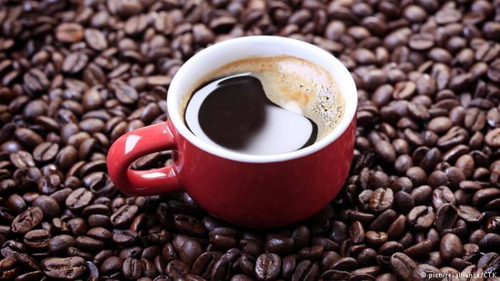 Photo of Кокаин наместо кафе?