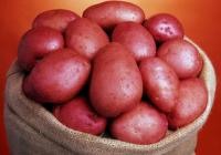 Досетлив земјоделец: Лут на трговските центри, поставил автомат за продажба на компир 24/7