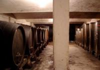 Со земјоделство до ресоцијализација: Одлични вина, свињи, овци, мед од затворот во Лепоглава