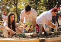 Отворена првата училишна градина во која децата сами ќе произведуваат храна