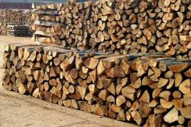 Photo of Доцни испораката на огревно дрво
