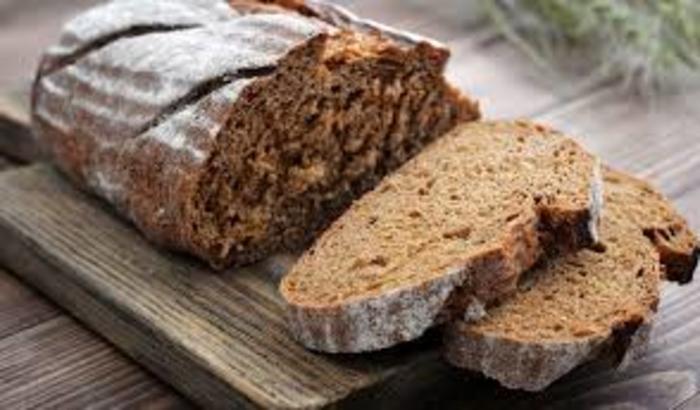 Photo of Во Македонија домаќинствата се најголеми расфрлачи на храна, најмногу се фрла леб