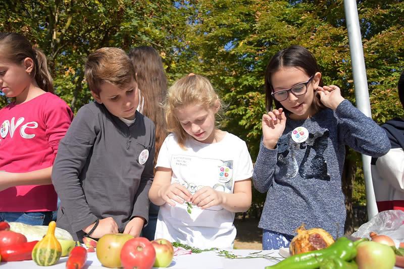 Photo of Одбележување на Светскиот ден на храната