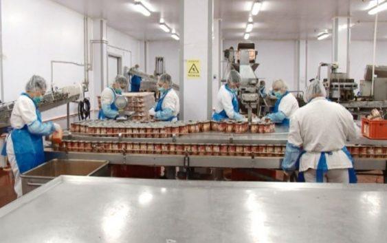 Производството во месната индустрија се зголемил за 30, а извозот за 60%