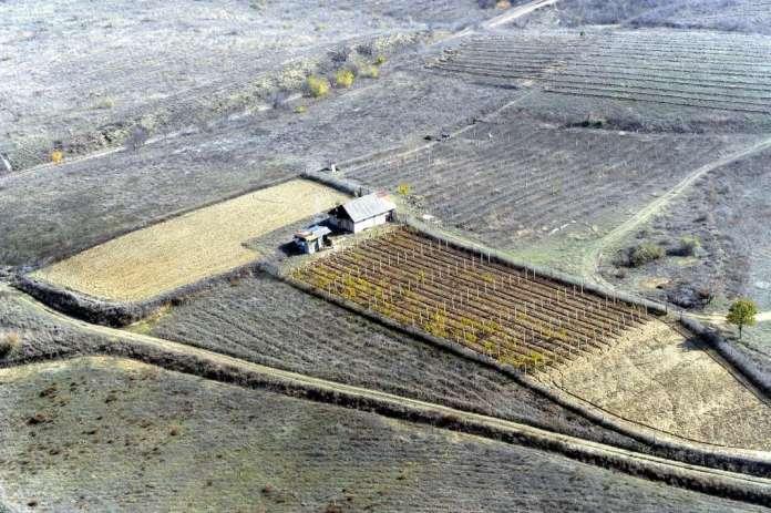 Photo of За 27 отсто помалку обработлива површина во последните 15 години