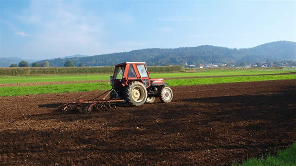 Photo of Информативна работилница за окрупнување на земјоделското земјиште