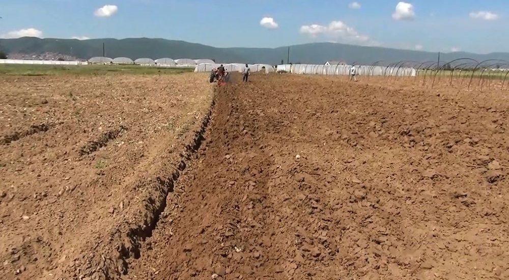 Photo of Почнуваат првите средби со земјоделците за консолидација на земјиштето