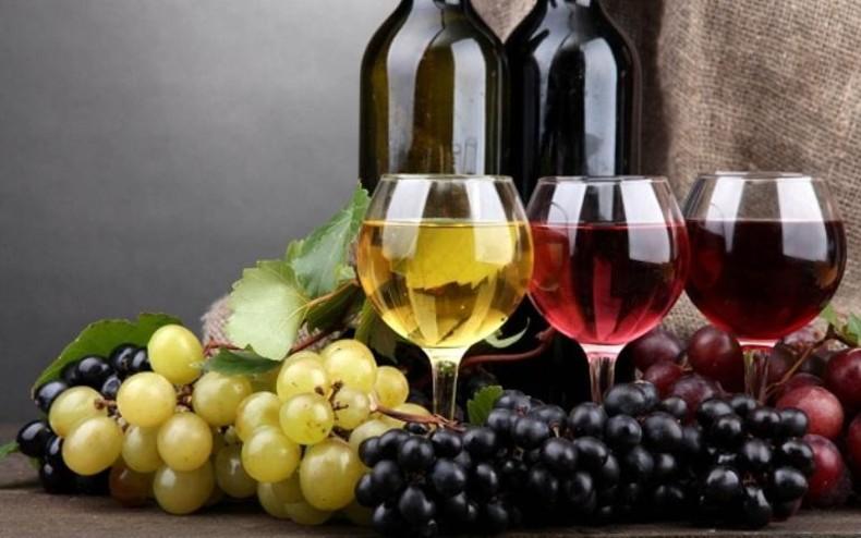 Photo of Натпревар за најдобро младо вино произведено во домашни услови