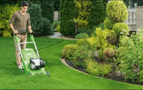Пет правила за успешно одржување на тревникот во текот на есента