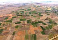 ФАО подготви видео анимација за консолидација на земјоделско земјиште