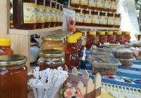 Климатските промени тројно го намалија производството на мед во Кумановско