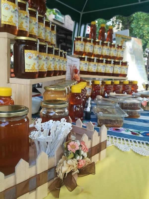 Photo of Климатските промени тројно го намалија производството на мед во Кумановско