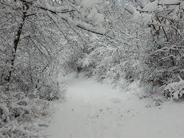 Photo of Снегот и дождот поволно ќе се одразат во земјоделското производство