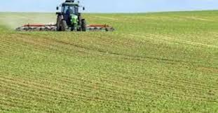 Photo of Бизнис заедницата со допис до МЗШВ и Анѓушев бара укинување на скалестото субвенционирање во земјоделството