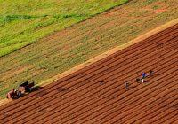 Деветта средба на сточари и земјоделци