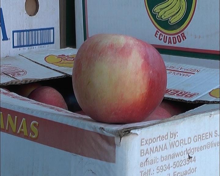 Photo of Тетовските  јаболка наместо на трпеза ќе завршат на депонија, а се најавува и корнење на овошните насади