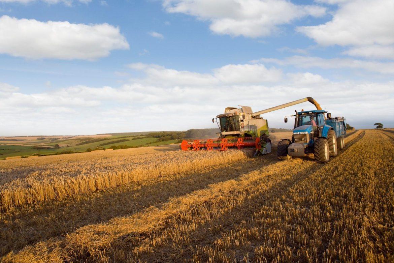 Photo of Исплатени 99,9 проценти од земјоделските субвенции и 1,4 милиони евра од првиот повик за ИПАРД 2