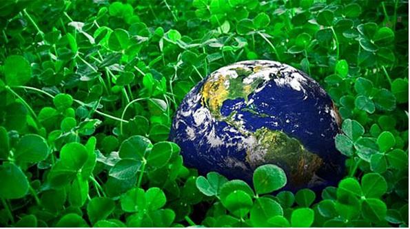 Photo of Промоција на добри практики за зелена економија
