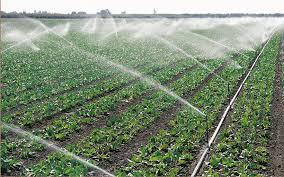 Photo of Земјоделците ќе добијат нови системи за наводнување