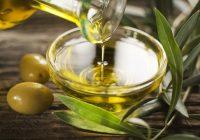 Инсектите ќе го скусат грчкото производство на маслиново масло за 40 отсто