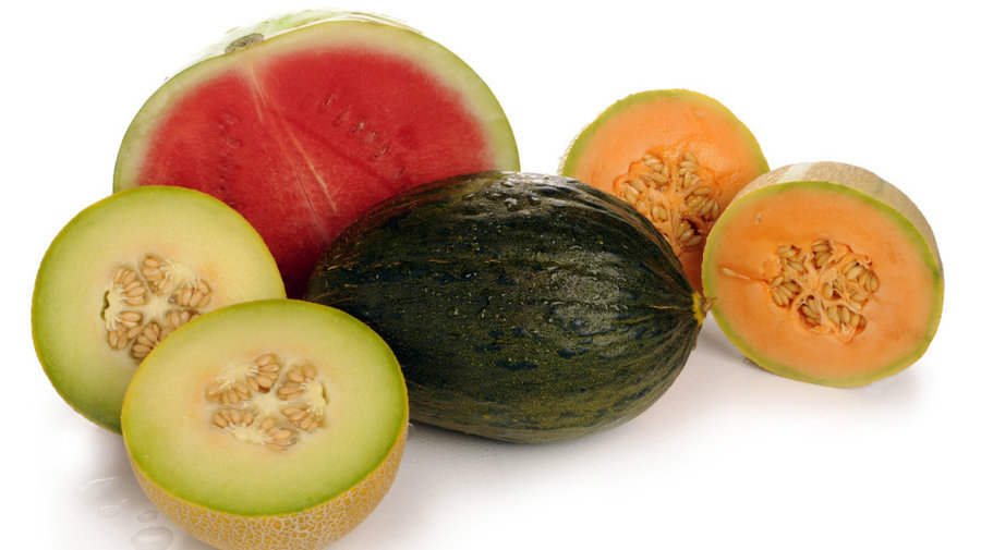 Photo of Калемење на лубеници и дињи