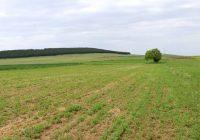 Индексот на цените во земјоделството кај инпутот е зголемен за 5.5 %, а кај аутпутот се бележи зголемување од 5.1 %