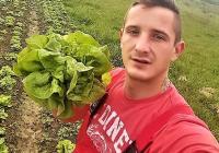Наместо на пазар, зеленчук продава преку Фејсбук
