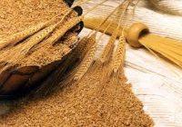Побарувачката на пченица расте, цената останува иста