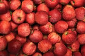 Photo of Најголемите 15 светски извозници на јаболко, меѓу нив и Србија. Македонија е 26та