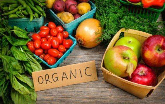 Органско производство – агро бизнис со одлична заработка