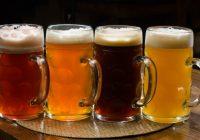 Пивото е вистинска течна храна