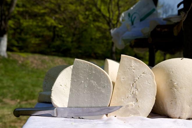 Photo of Да не се санитарните пречки, галичко сирење ќе ја прегази и моцарела