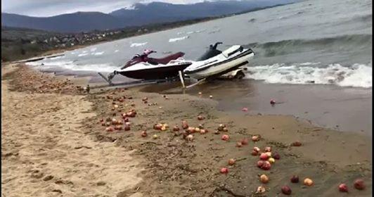 Photo of Преспанските јаболка завршија вo езероto