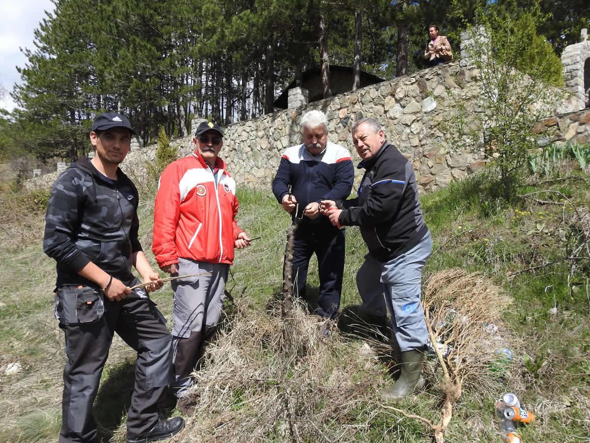 Photo of Калемење на диви круши во с.Горно Српци