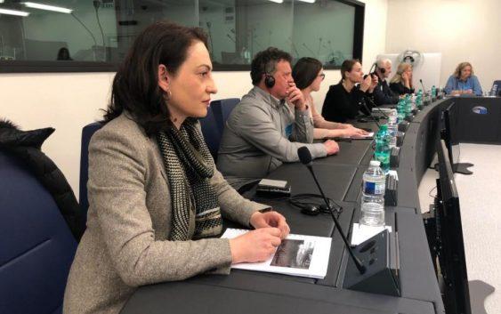 Потенцијалот на македонските вина претставен пред евро пратениците