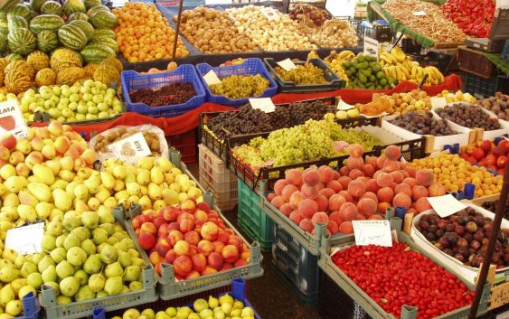 Климатските промени се закануваат со десеткување на производството на храна