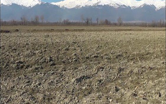Во тек е подготовка на нови огласи за доделување на државно земјоделско земјиште под закуп