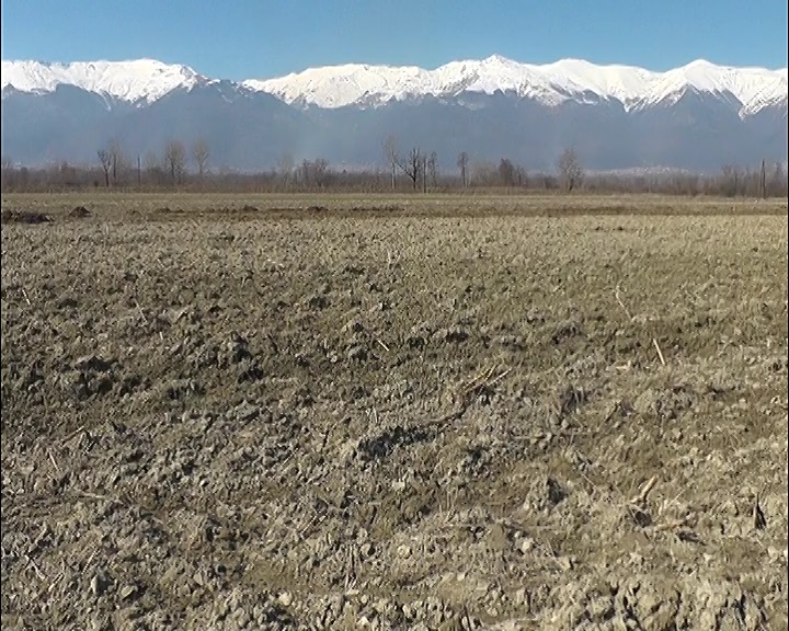 Photo of Во тек е подготовка на нови огласи за доделување на државно земјоделско земјиште под закуп