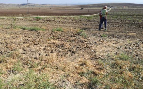 Растат цените во земјоделството