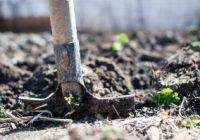 Справување со земјоделски отпад и енергетска ефикасност и искористување на обновливи извори на енергија
