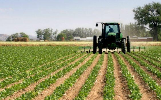 Дождот позитивно ќе влијае на земјоделските култури