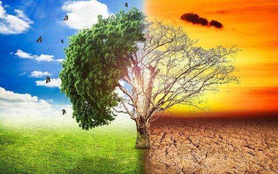 Неможноста за прилагодување на климатските промени – причина за изумирање на растителниот и животинскиот свет