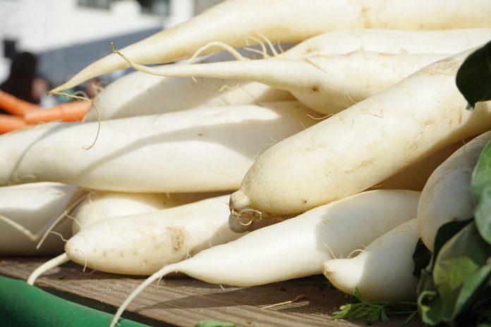 """Photo of Бела ротква: Јапонците ја викаат """"чистач на телото"""""""