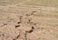 Заштита на почвата од ерозија