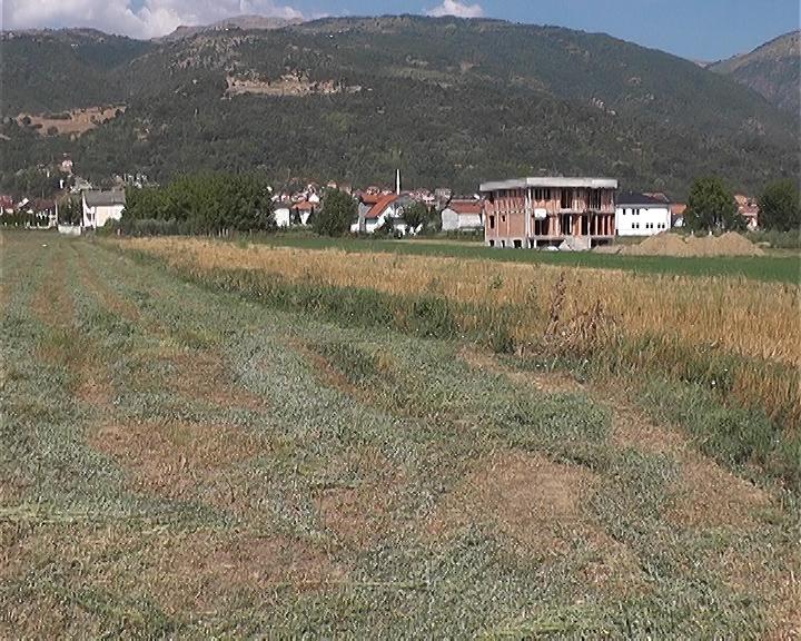 Photo of Земјоделците дојдоа до питачки стап поради лошата земјоделска политика