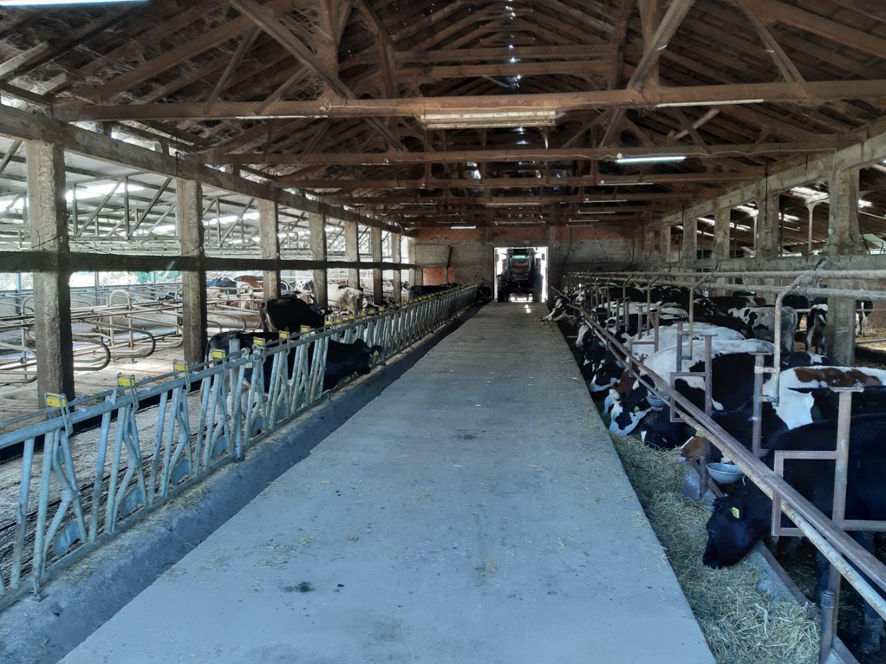 Photo of Сон на секој фармер е да има модерна фарма